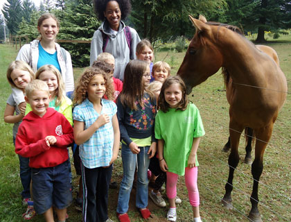 A friendly horse greeted campers on their way to visit a local